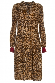 SET Dress Leopard